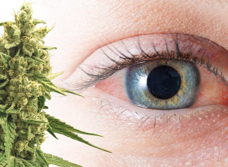 Why Cannabis Turns Eyes Red and How to Fix It