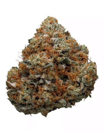 Godfather OG Marijuana Strain