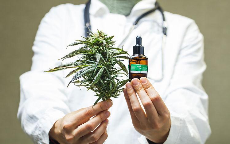 marijuana doc.jpg