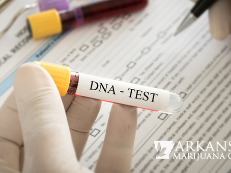 New DNA Test Gives Personalized Cannabis Recommendations