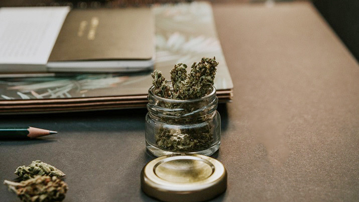 St. Louis University Cannabis Certificate Program
