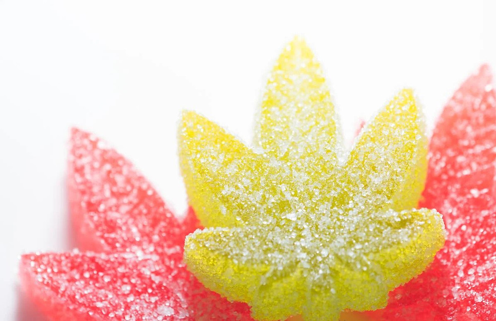Should You Take Edibles On An Empty Stomach
