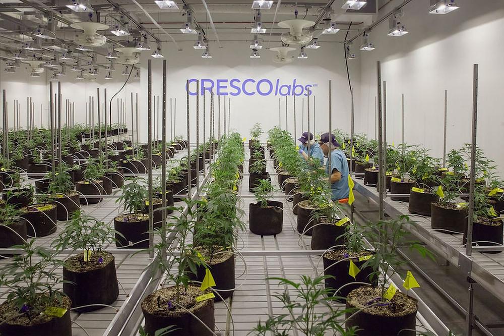Cresco Labs Acquires 4 Dispensaries In Ohio