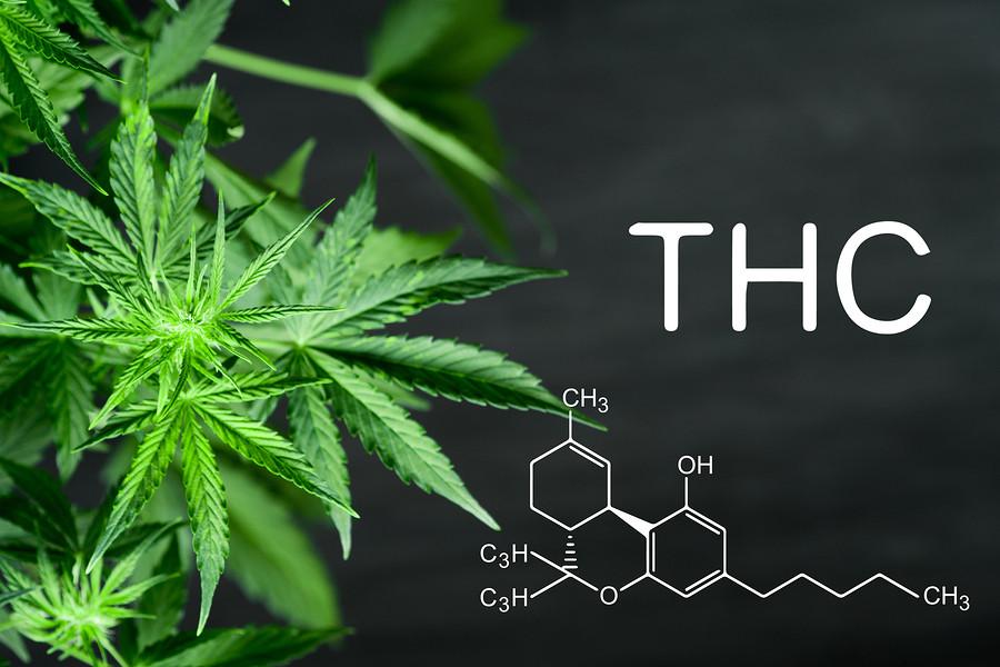 THC and Marijuana Storage