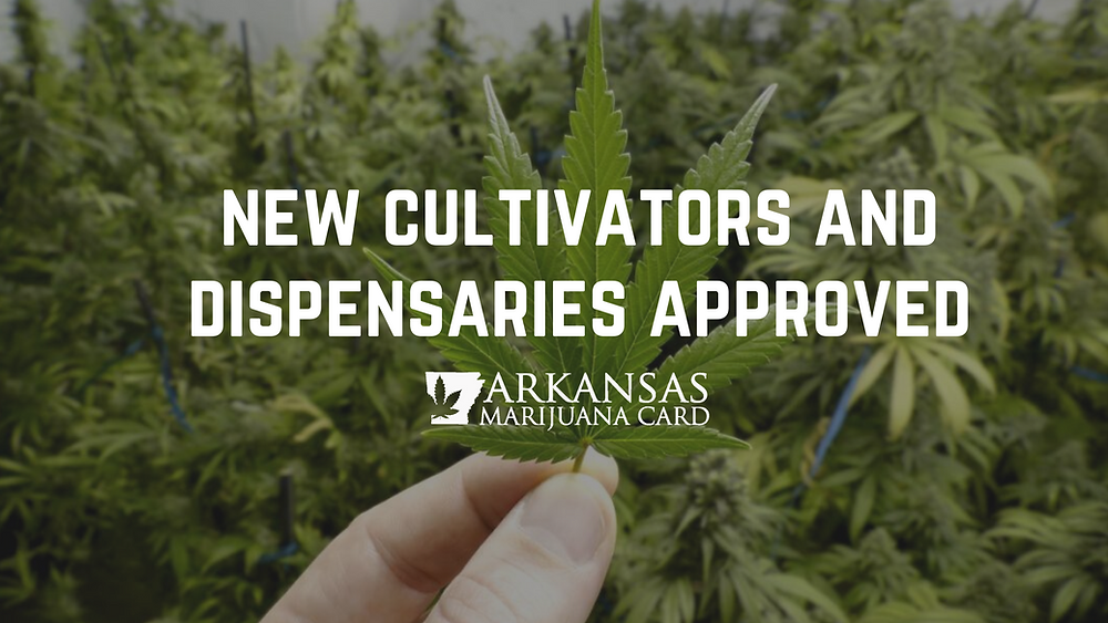New Arkansas Marijuana Cultivator and Dispensary Licenses Awarded