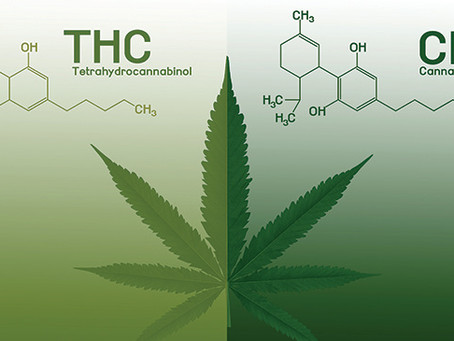 The Entourage Effect: Using THC and CBD Together
