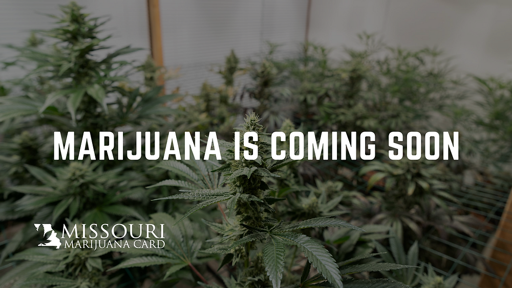 Missouri Marijuana dispensaries opening soon
