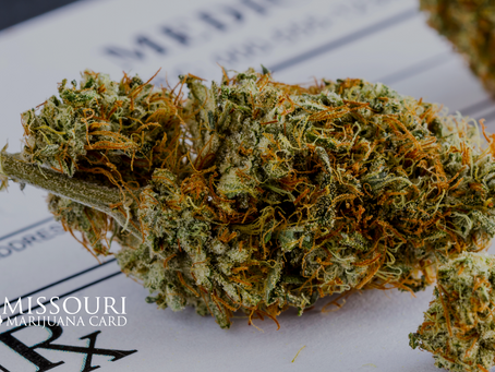 Cannabis and Medical Procedures: What is Safe?