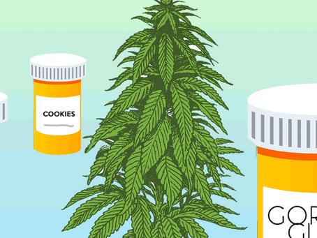 Medical Marijuana vs. Recreational Marijuana: What's the Difference?