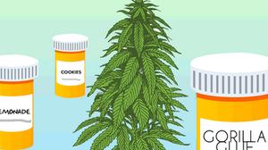 Medical marijuana vs recreational marijuana