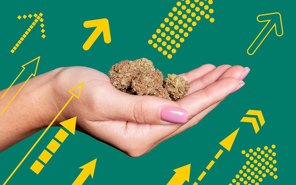 Best Selling Most Popular marijuana strains in Arkansas
