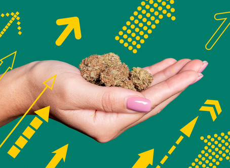 Most Popular Strains at Arkansas Medical Marijuana Dispensaries