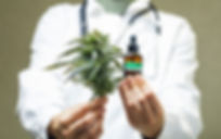 how-to-find-the-right-cannabis-doctor (1