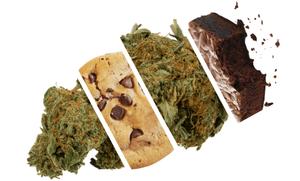 Eating marijuana flower vs edibles