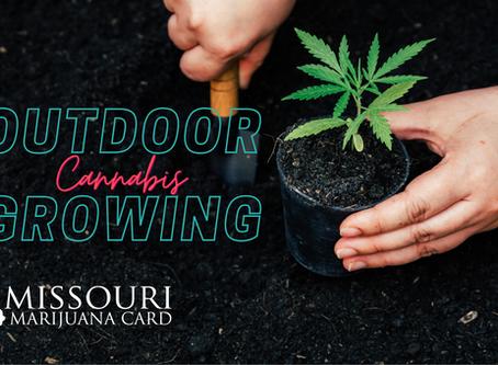 The Best Time To Grow Medical Marijuana Outdoors