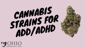 Best Marijuana Strains for ADD ADHD
