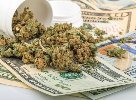 Cannabis Stock Prices Plummet. What This Could Mean For Medical Marijuana