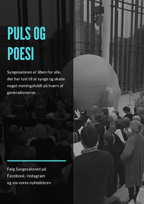 PULS OG POESI.png