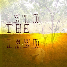 into the land.PNG