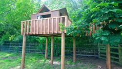 Spectacular raised treehouse with walkway around trees