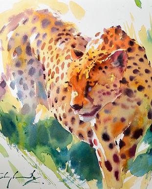 3.6.21 - Cheetah websize.JPG