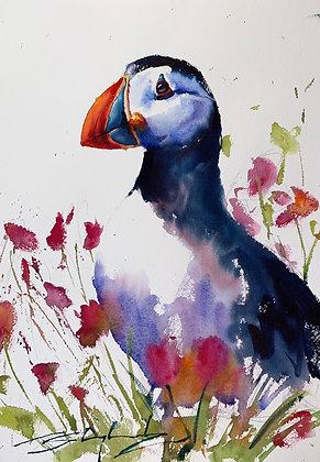 Puffin Watercolour A3 (30x42cm)