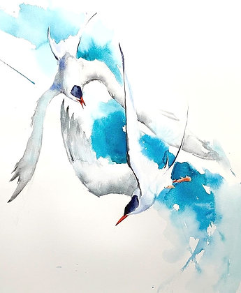 Zoom Demo 8th May: Dynamic Birds in Flight, Watercolour