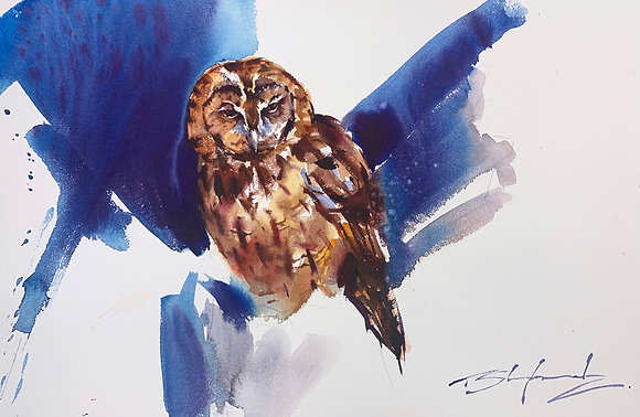 """To Go or Not"" - Tawny Owl (48x58cm)"
