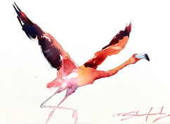 Flying%20Flamingo%20-%20Watercolour_edit