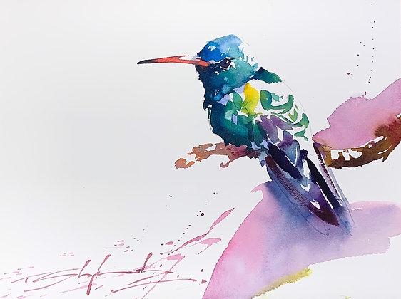 "Sitting Green  - Hummingbird Watercolour 9"" x 12"""