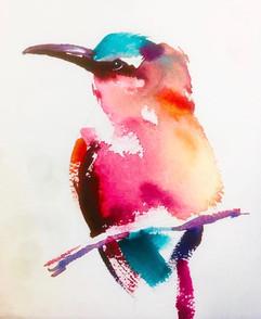 Colourful Splash - watercolour.jpg
