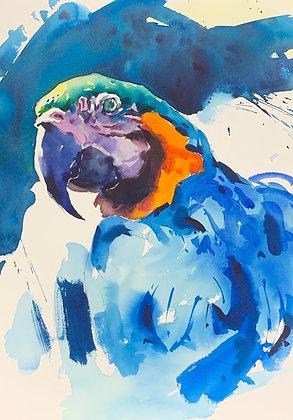 """""""Gold n Blue"""", Watercolour A3"""