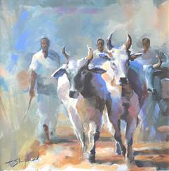 Nepali Herders