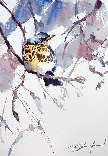 Fieldfare%20WC%20websize%2072dpi_edited.