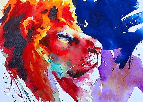 """Snoozing Lion"", Watercolour 10x14"