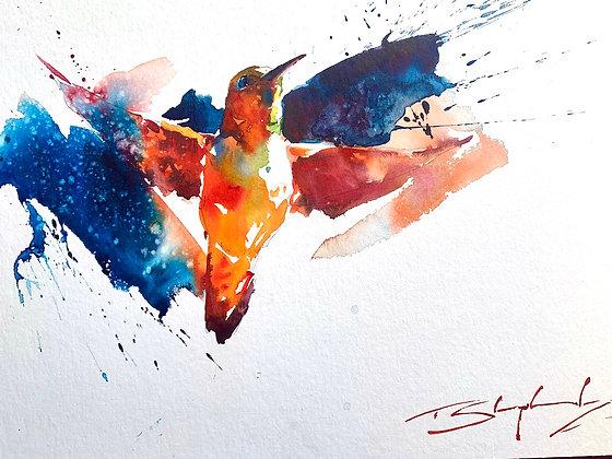 "Colourful Flyer - Hummingbird 11"" x 14"""