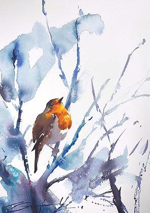 Robin Watercolour A3 (30x42cm)