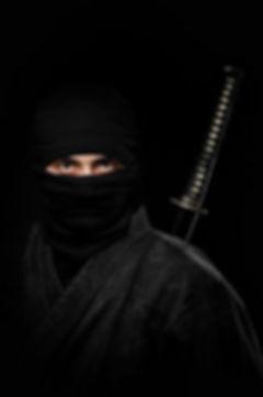 NinjaHistory101.jpg
