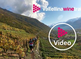 Sonniger Saisonabschluss Valtellina Winetrail
