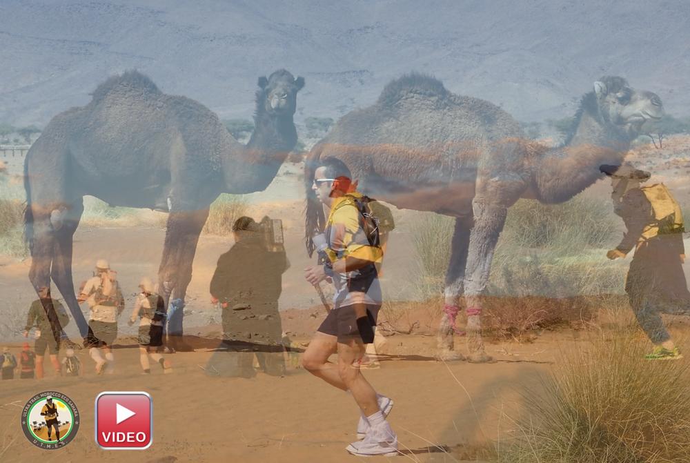 Laufcoaches.com und spektakuläre Bilder beim Ultra Trail Morocco Eco Sahara