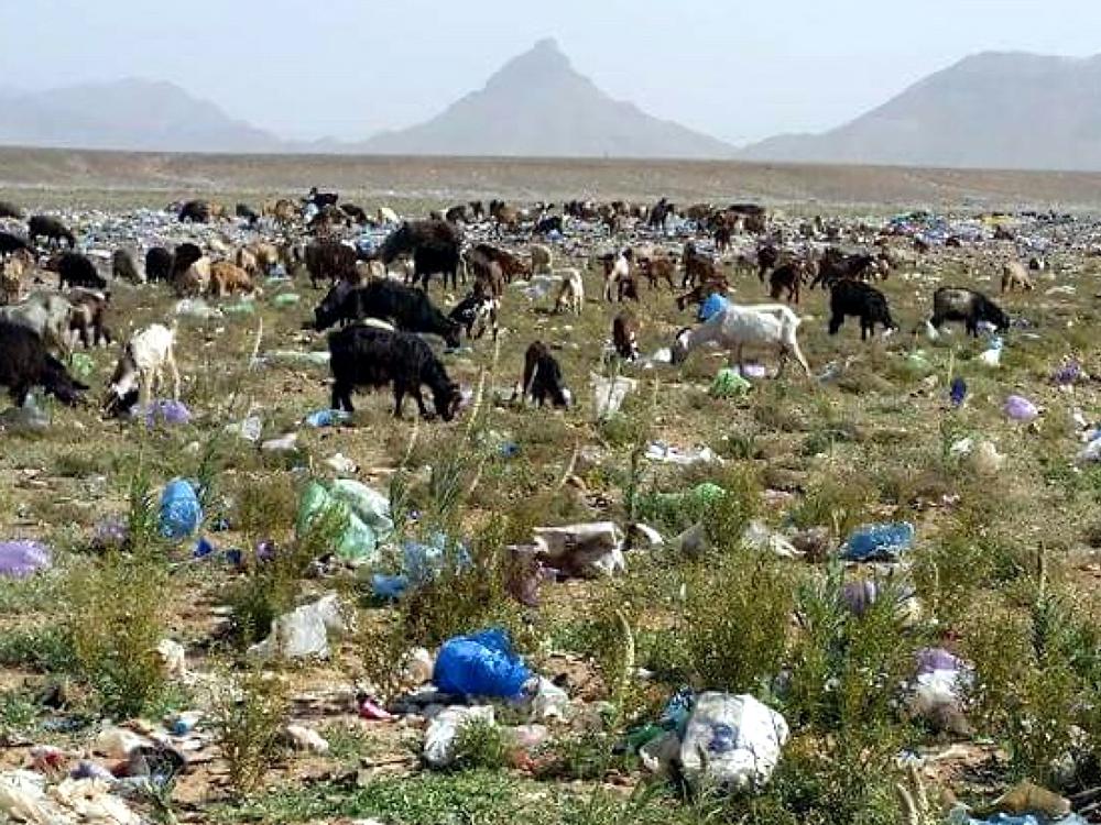Mit Mohamad Ahansal und Laufcoaches.com gegen Müll in der Wüste