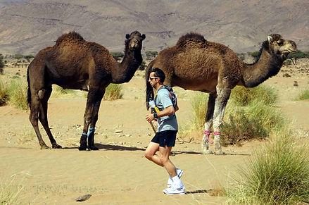 Mit Laufcoaches.com zum Ultra Trail Morocco Eco Sahara in die Wüste