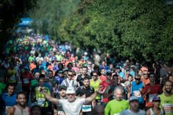 Marathon Lauf Buch Raab Start