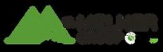 Melner-Stellar-Logo-Horiz-CMYK-01.png