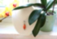 Pendentif_et_orchidée.png