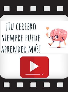 video-cerebro