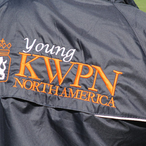 Introducing the New Young KWPN-NA