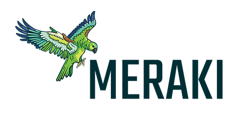 MERAKI_2_HORIZONTAL.png