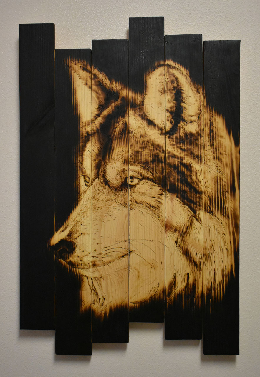 Extinction crisis_wolf