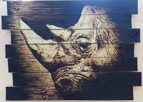 extinction-crisis_rhino_
